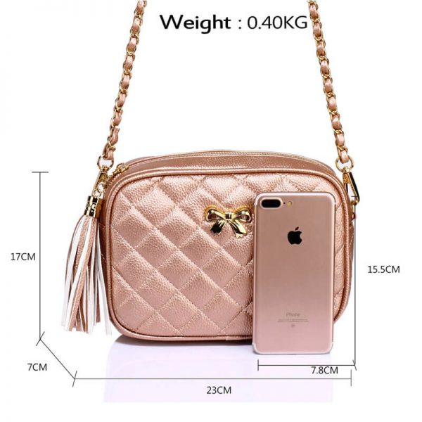 AG00540 – Champagne Cross Body Shoulder Bag_2_