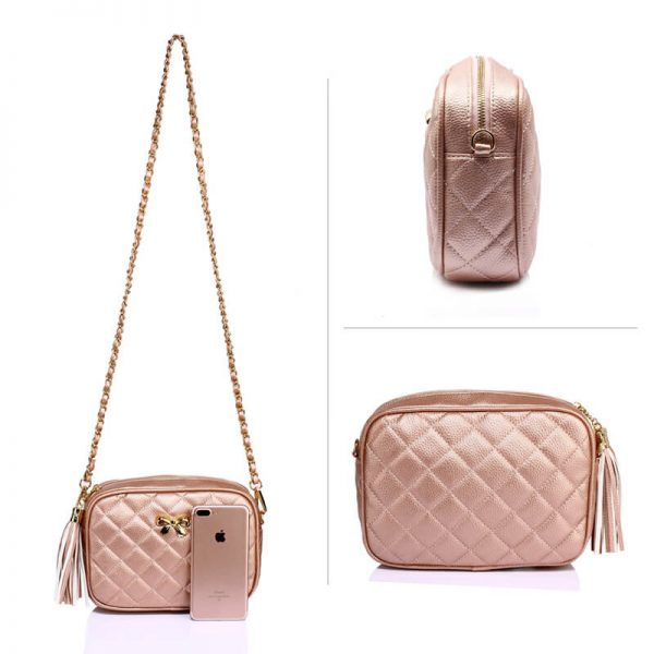 AG00540 – Champagne Cross Body Shoulder Bag_3_