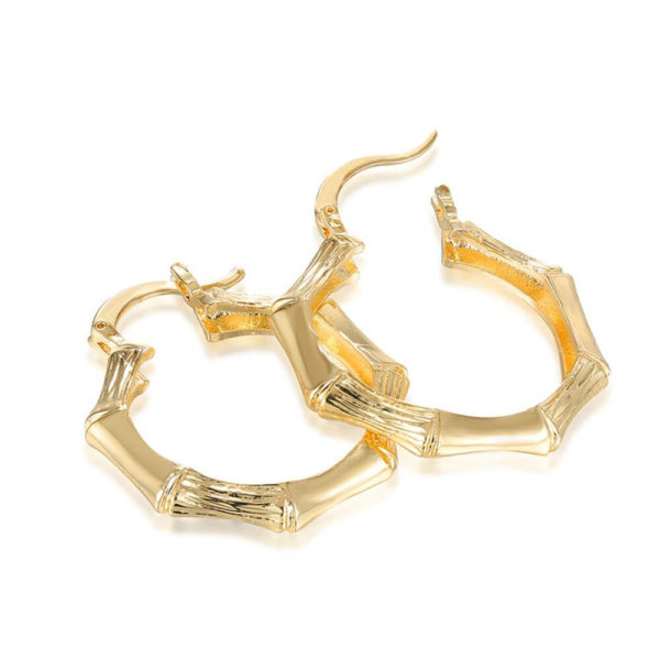 AE32 Gold Hoop Earring Trendy and stylish 1