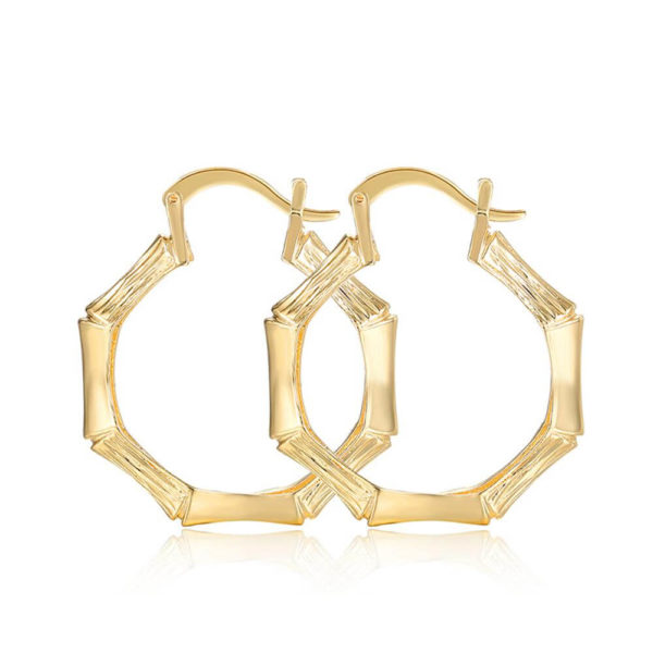 AE32 Gold Hoop Earring Trendy and stylish 2