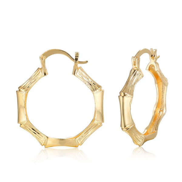 AE32 Gold Hoop Earring Trendy and stylish 3