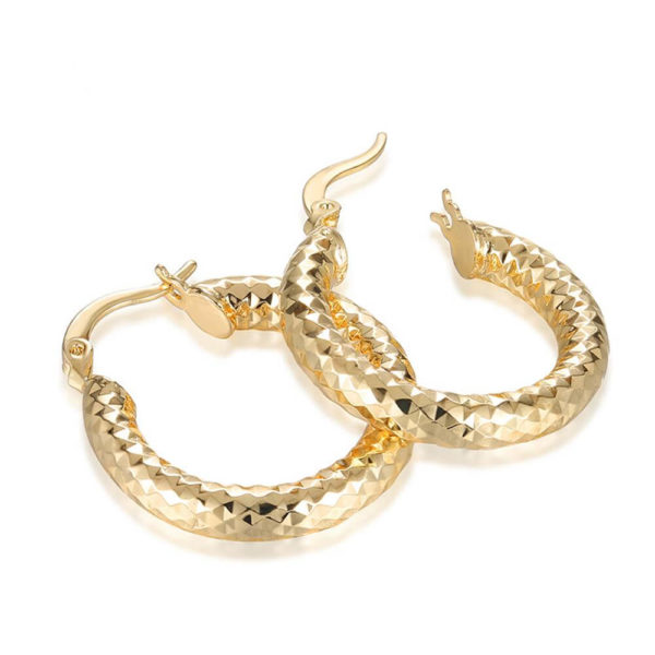 AE34 Small Circle Hoop Earring Shinny Gold 1