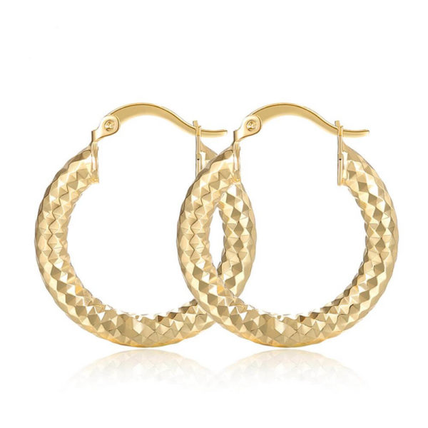 AE34 Small Circle Hoop Earring Shinny Gold 2