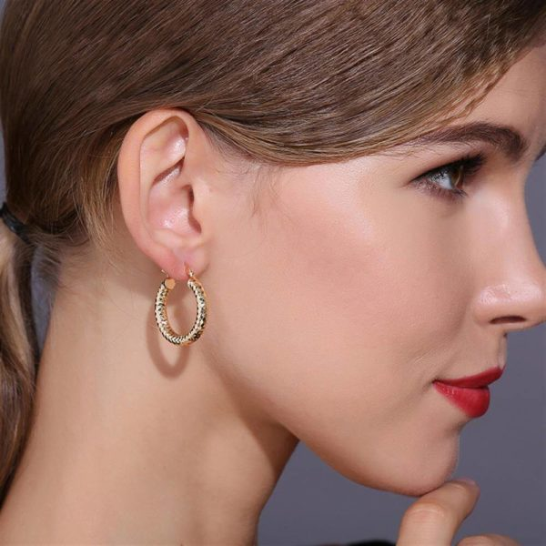 AE34 Small Circle Hoop Earring Shinny Gold 5