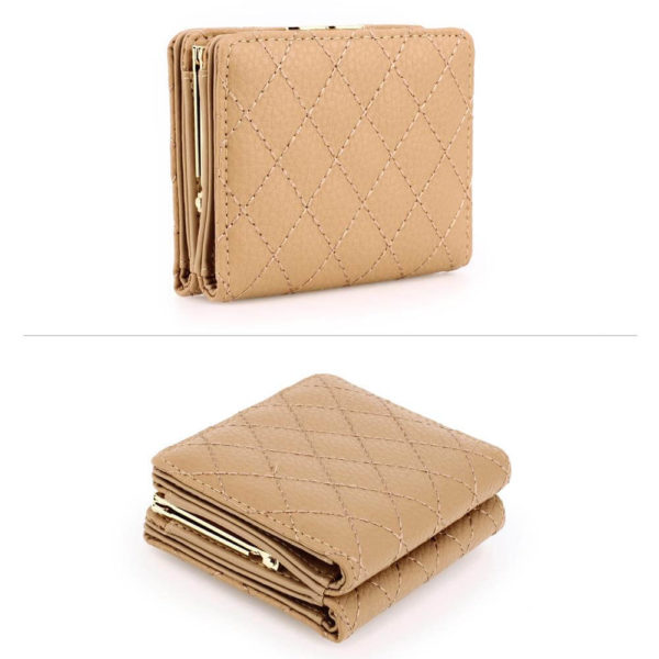 agp1084-nude-coin-purse-wallet-with-gold-metal-work__3_