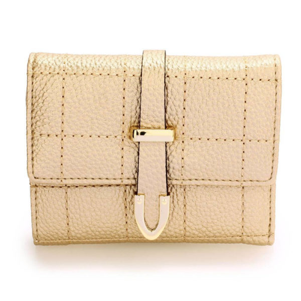 agp1085-gold-flap-purse-wallet-with-gold-metal-work__1_