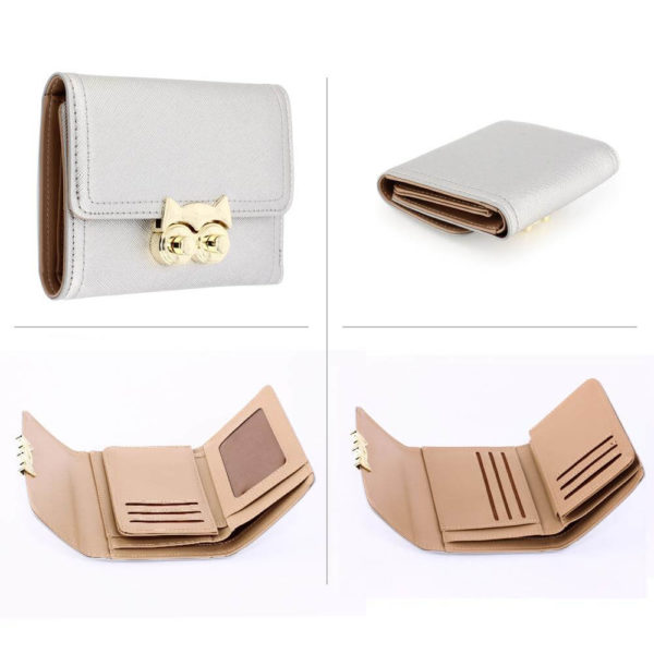 agp1090-silver-purse-wallet-with-gold-metal-work__3_