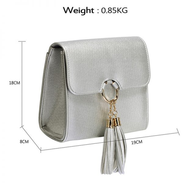 agc00348-silver-flap-clutch-purse-with-tassel-2