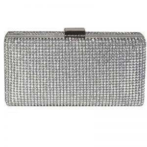 Sparkly Evening Clutch