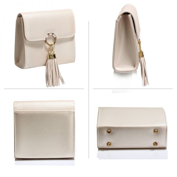 AGC00348 -nude Flap Clutch Purse With Tassel_3_