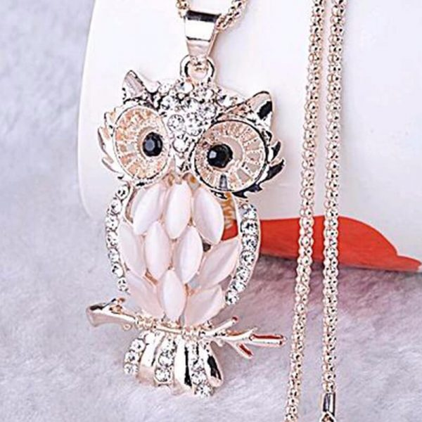 SilerGold Owl Party Necklace For Her AN92-