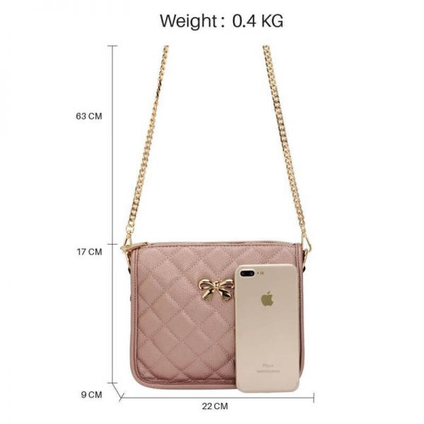 AG00598 champagne Cross Body Shoulder Bag2_