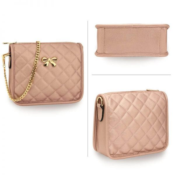 AG00598 champagne Cross Body Shoulder Bag3_