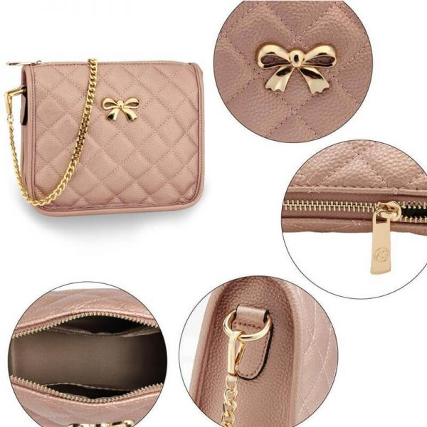AG00598 champagne Cross Body Shoulder Bag5_