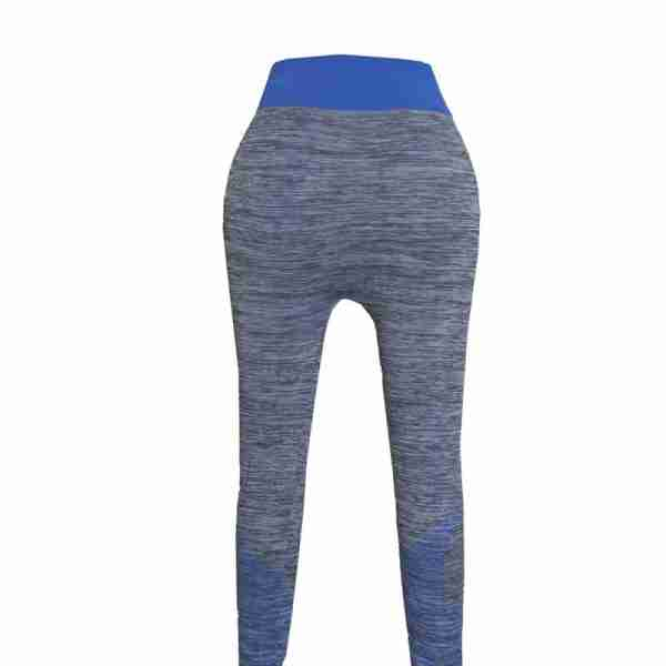 ZL11 – 1 – Blue Ladies Sports Yoga Exercise or Daily Use Legging Tights