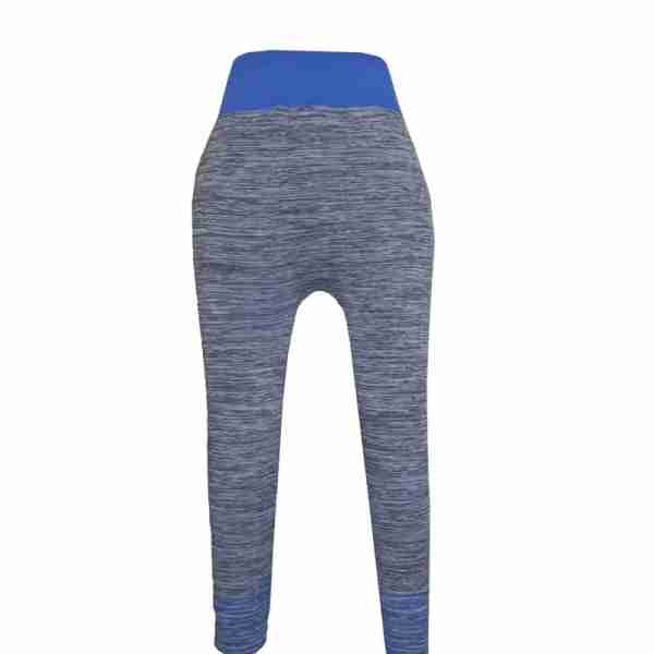ZL11 – Blue Ladies Sports Yoga Exercise or Daily Use Legging Tights