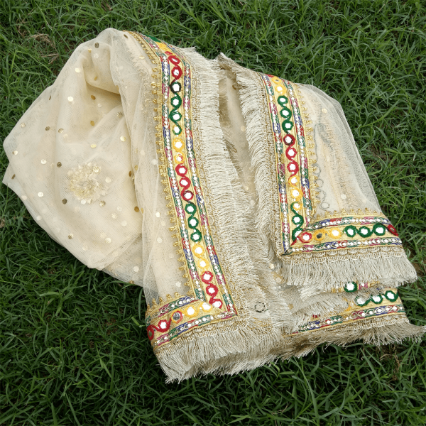 2 ZD193 Gota Work Heavy – Large Fancy Dupatta For Wedding Party Use – Full Length – Beige PNG